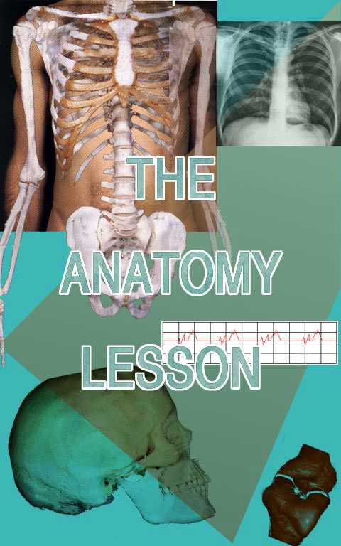 Homepage for the anatomy lesson ccuart Choice Image